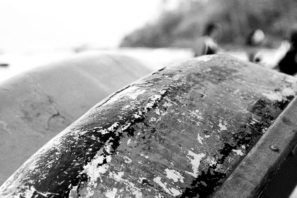 Boat Barco Texture